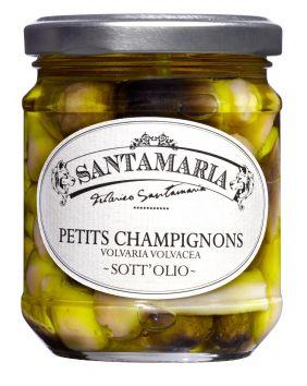 Petits champignons antipasti Santamaria 190 g