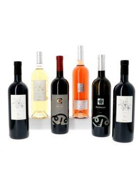 Découverte des vins de Sardaigne