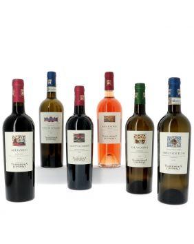 Découverte des vins de Campanie