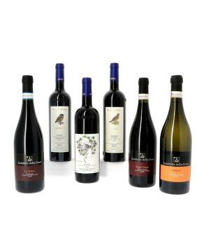 Découverte des vins du Piémont