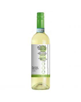 Pinot grigio Bio vin blanc sec IGP du Veneto 75 cl (Era)