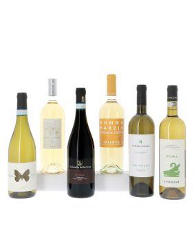 Découverte des vins blancs italiens