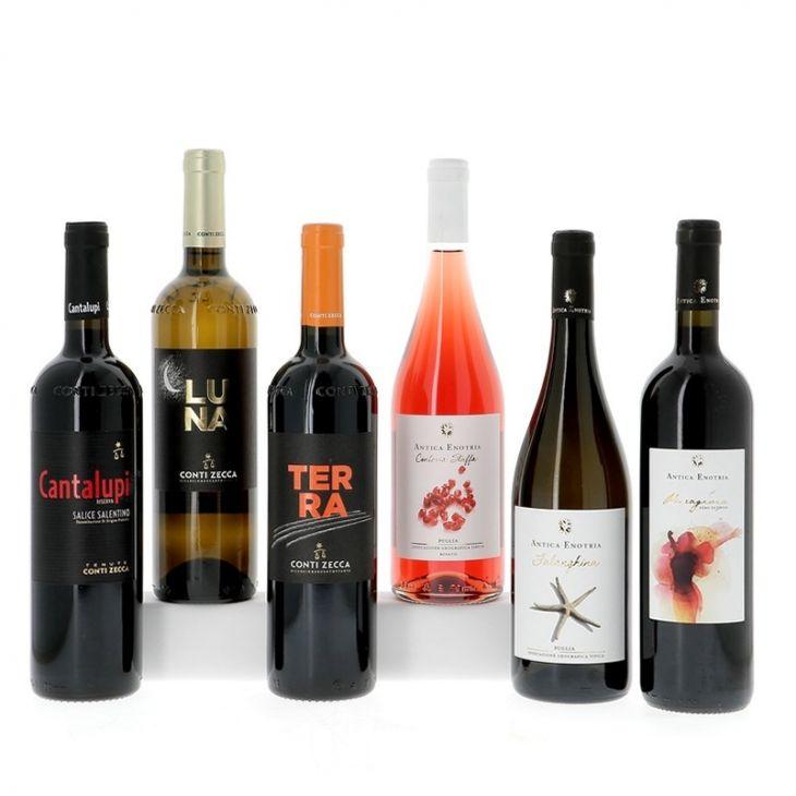 Découverte des vins des Pouilles