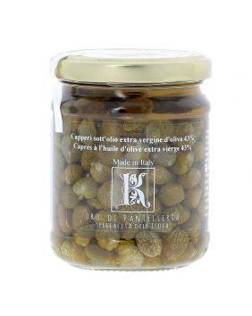 Câpres de Pantelleria à l'huile d'olive Kazzen